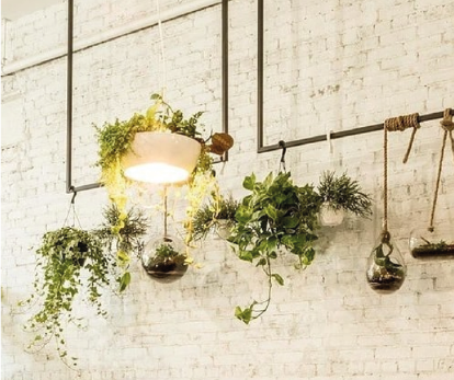2020 Home Design Trends: Biophilic Design